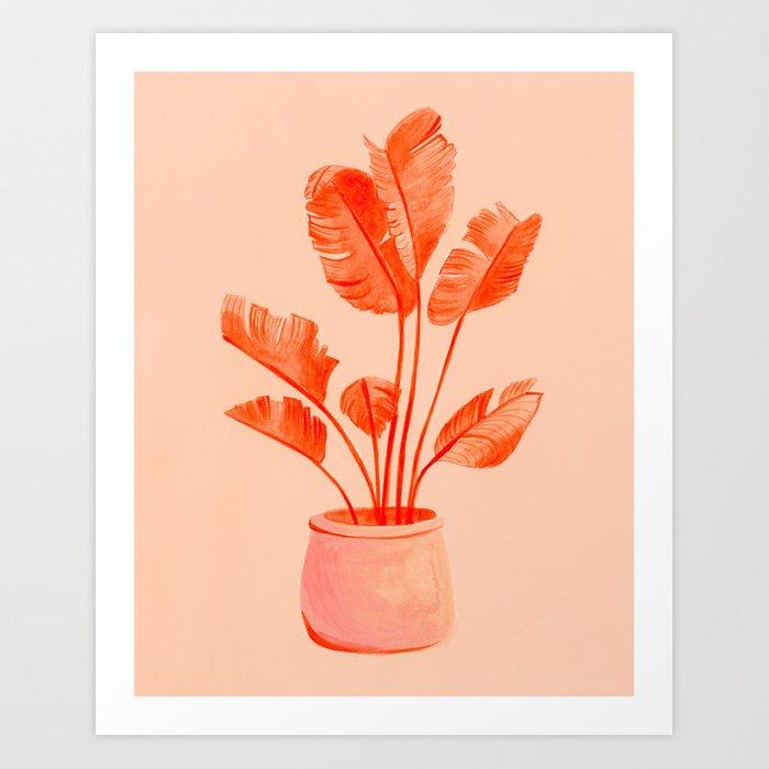 coral banana plant prints - badgedealers - Web Development, Graphic Design and Illustration Studio from Bergamo – Milano, Italia.