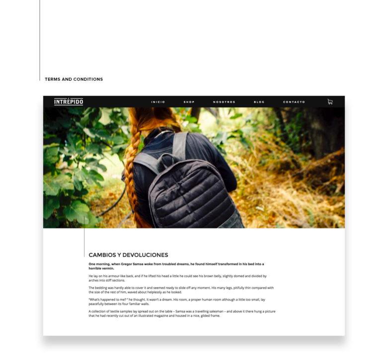 badgedealers intrepido e commerce website design ui ux 6 - badgedealers - Web Development, Graphic Design and Illustration Studio from Bergamo – Milano, Italia.