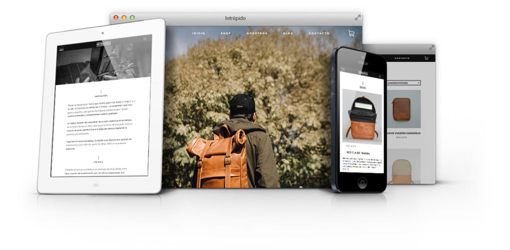 Intrepido Responsive Website Design on different devices